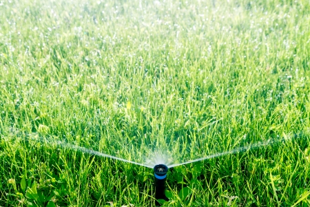 Automatic sprinkler watering green grass photo