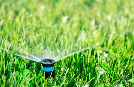 irrigation equipment: Lawn sprinkler watering green lawn Stock Photo