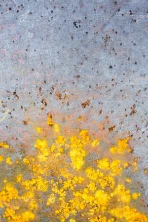 Rusty metal texture with scratches Stock Photo - 15269146