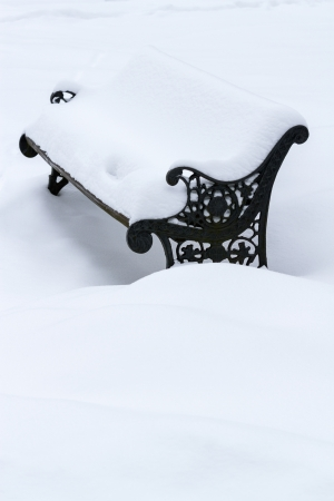 Bench in the park in winter photo