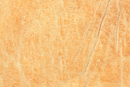 Natural brown leather texture  Extremely macro Stock Photo - 22439642