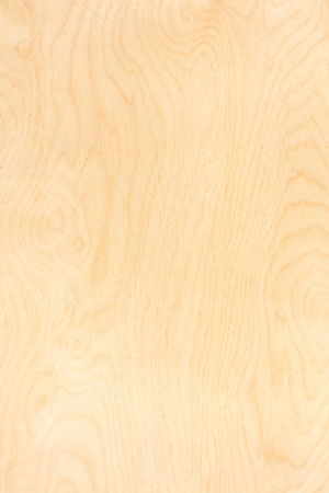 plywood: Birch plywood. High-detailed wood texture series.