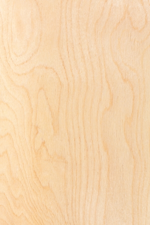 Birch plywood  High-detailed wood texture series Imagens - 22813832