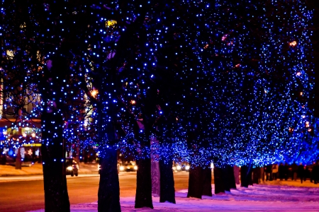 Trees on street decorated with blue Christmas lights garlands
