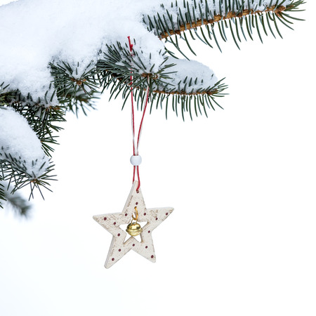 Christmas evergreen spruce tree and star photo