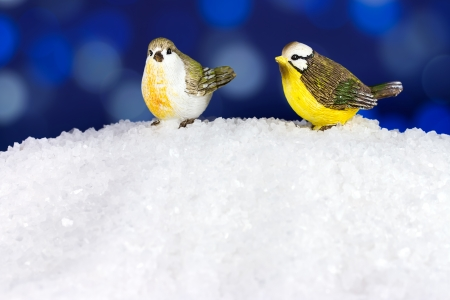 Two cute Christmas birds in winter time photo