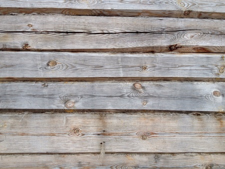 rough: Grey pine logs of wooden wall