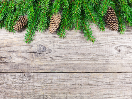 Christmas fir tree branches on wooden background photo