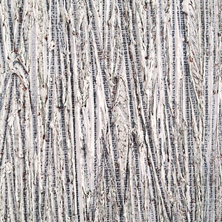 canvas: Abstract painted texture on canvas