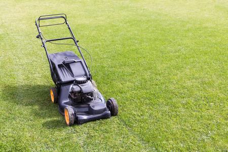lawn mower on green grass lawn in sunny day photo