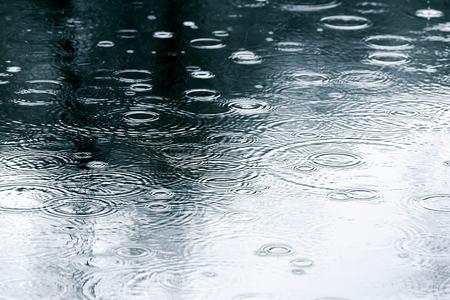 kropla deszczu: Chodnik z kałużami wody i refleksji drzew Zdjęcie Seryjne