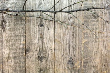 old wooden rustic boards with bare branch as christmas background