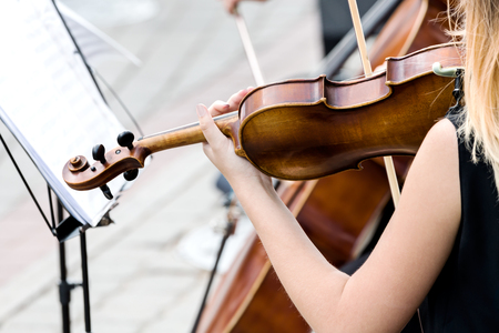 woman violin: hands of young woman violin player plays music at street concert