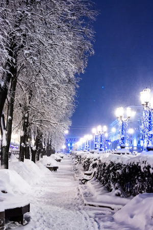 lit lamp: night winter landscape. city street with trees and benches covered in snow with brightly lit lamp posts.