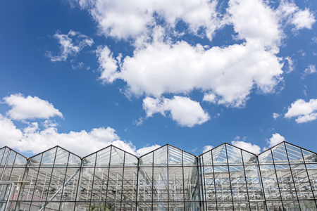 large agricultural greenhouse glass facade against blue cloudy sky Stock Photo
