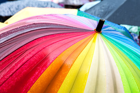 rainbow umbrella stand out from the crowd of many umbrellas in the rain