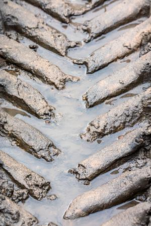 tire tracks pattern imprints on wet muddy ground closeup