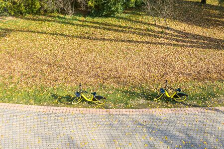 yellow rent-a-bikes parked near footpath in public park on a sunny autumn day. aerial photo Stok Fotoğraf - 132615987