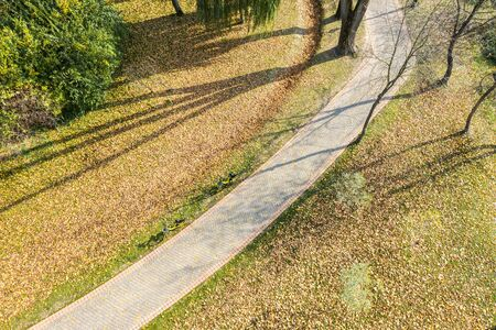 bicycles in the autumn park. ground covered by dry yellow and orange fallen leaves. aerial view Stok Fotoğraf - 132615990