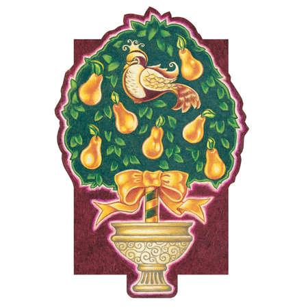 梨: ナシの木のヤマウズラ  イラスト・ベクター素材