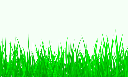 Green Grass Border Seamless background. Vector Illustration EPS10