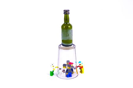 degradation: alcoholic personal degradation green bottle glass and plastic toys