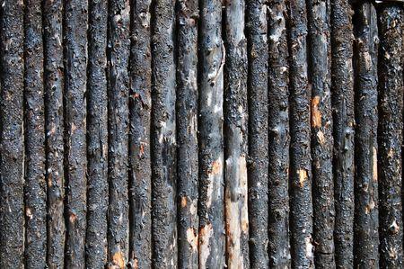 stockade: the very unusual light burned bark pine log palisade