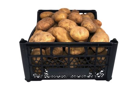 the box or tray of  bright yellow potatoes isolated over white Stock Photo - 7852138