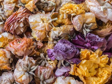 fiori secchi: Fiori secchi bouquet close-up vista