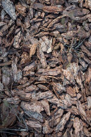 Clean, fresh, pine bark mulch beautifully illuminated by the sun