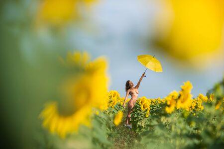 Bella donna con un ombrello giallo in un campo di girasoli. Splendida figura. Bikini fitness. Una ragazza con il silicone si nasconde dal sole sotto un ombrellone in campagna. Archivio Fotografico