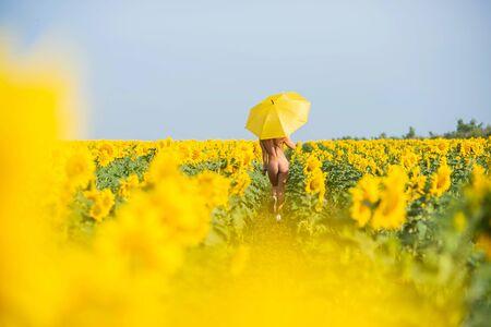Une belle femme se cache derrière un parasol jaune dans un champ de tournesols. Fesses élastiques. Bikini de remise en forme. Vue arrière. Fille à la campagne
