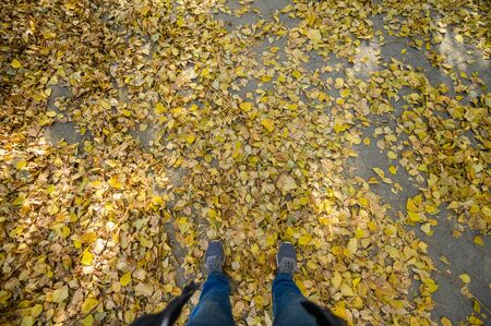 Men's feet in blue jeans and gray sports sneakers on autumn asphalt with yellow fallen leaves. First-person view