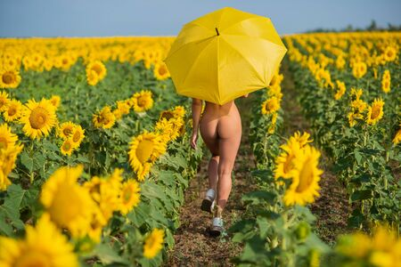 A beautiful woman is hiding behind a yellow parasol in a field of sunflowers. Elastic buttocks. Fitness bikini. Back view. Girl in the countryside