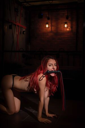 A woman kneels and holds a whip in her teeth. Submissive woman in BDSM role-playing game. Reklamní fotografie