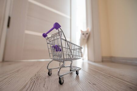 An empty mini shopping trolley stands at the open door. White fluffy cat in the doorway. Concept of online shopping with home delivery.