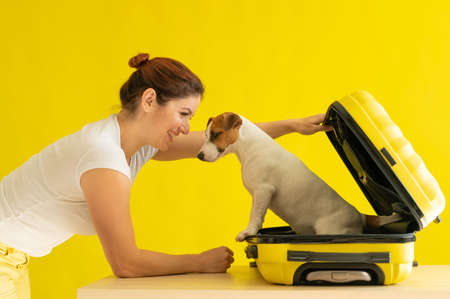 Happy woman holds an open suitcase with a dog inside on a yellow background. Jack Russell Terrier puppy is sitting in a luggage bag and is ready to travel. Smiling girl. Zdjęcie Seryjne