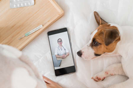 A woman communicates remotely with a doctor on her mobile while lying in bed. A loyal dog lies next to the sick owner. Online medicine