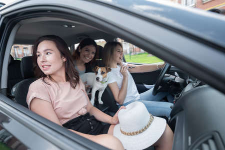 Three happy women travel the suburbs in a car with a dog. Cheerful girlfriends are going on vacation by car 写真素材