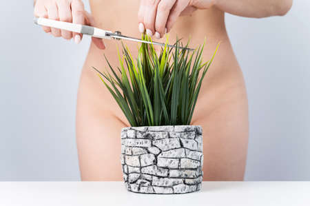 A faceless woman cuts a bush. Epilation of the bikini zone on a white background