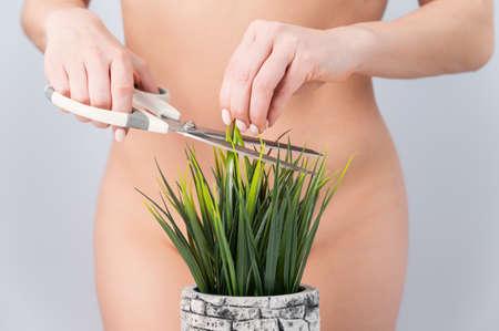A faceless woman cuts a bush. Epilation of the bikini zone on a white background Banco de Imagens
