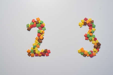 Numeral twenty three from sweet pastry topping in the form of colorful foliage on a white background. 写真素材