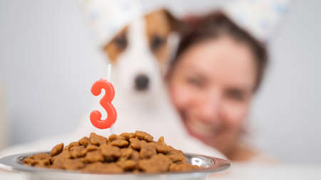 Caucasian woman and jack russell terrier in holiday caps look at a bowl of dry food with a candle. The dog and the owner are celebrating third birthday