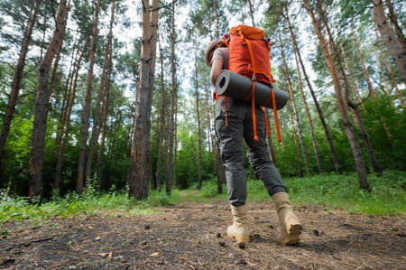 Young caucasian woman is engaged in hiking. A girl with a tourist backpack walks through the coniferous forest