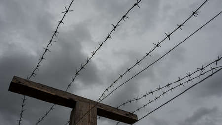 Close-up of barbed wire on gray clouds background. 写真素材