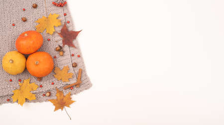 Autumn flat lay. Pumpkins and maple leaves viburnum and cinnamon and acorns on a gray plaid on a white background. Copy space 写真素材