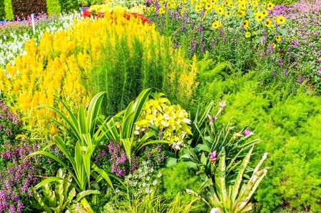 A rich variety of beautiful gardens