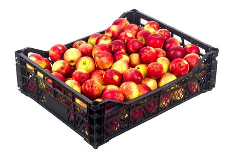 Crate avec des pommes rouges sur un fond blanc Banque d'images - 65100574