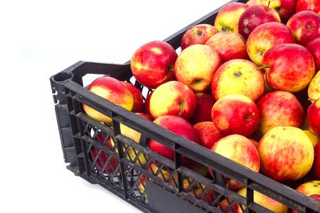 Crate avec des pommes rouges sur un fond blanc Banque d'images - 65100576