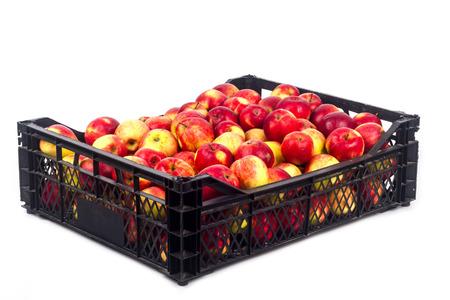 Crate avec des pommes rouges sur un fond blanc Banque d'images - 65100577